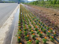 군위군 소보면, 방치된 공간 꽃길 조성으로 '새단장'
